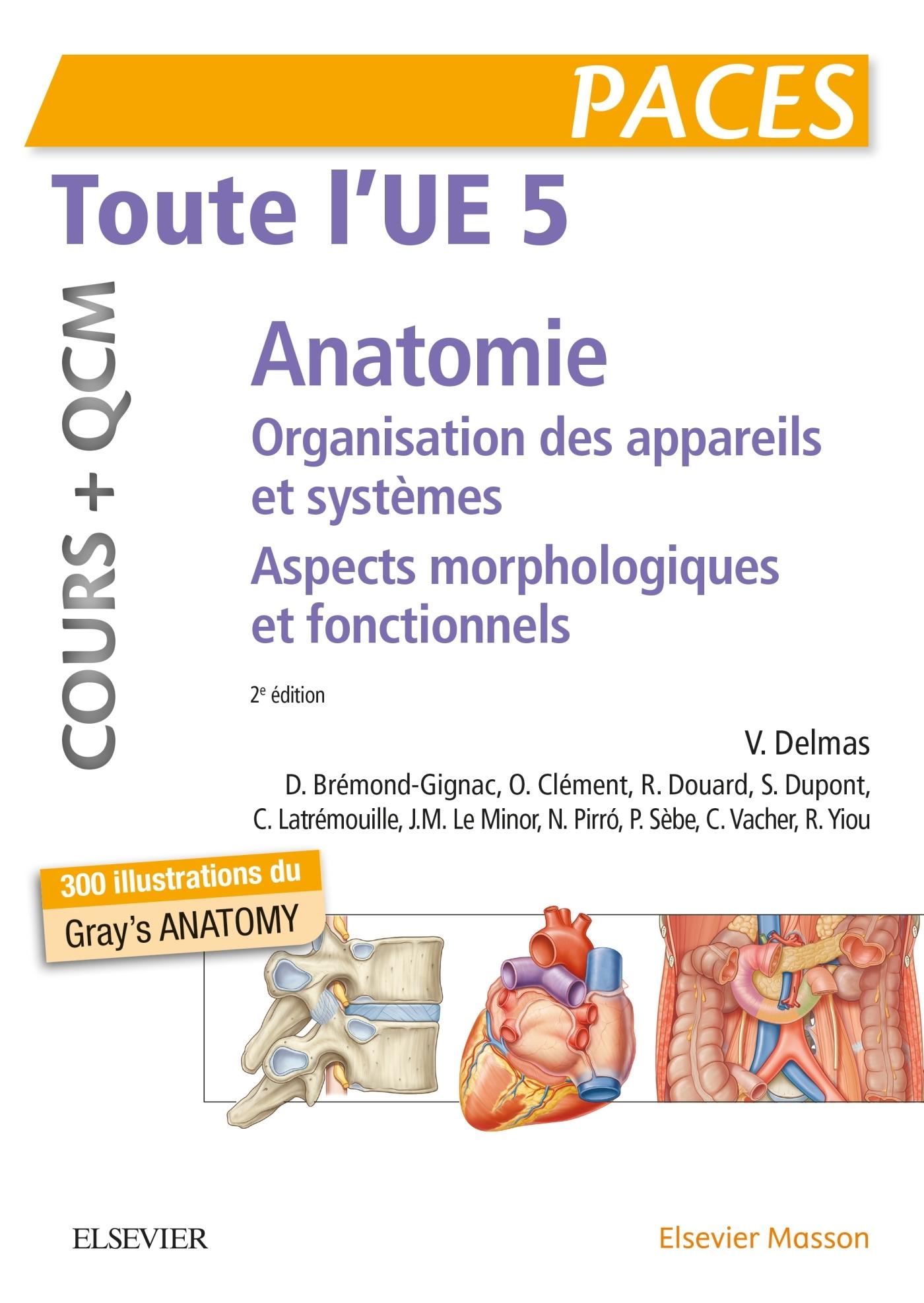 TOUTE L'UE 5 - ANATOMIE - COURS + QCM - ORGANISATION DES APPAREILS ET DES SYSTEMES - ASPECTS MORPHOL