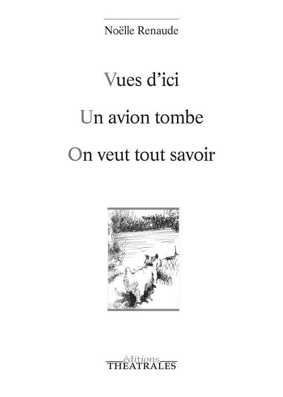 VUES D'ICI-UN AVION TOMBE-ON VEUT TOUT SAVOIR