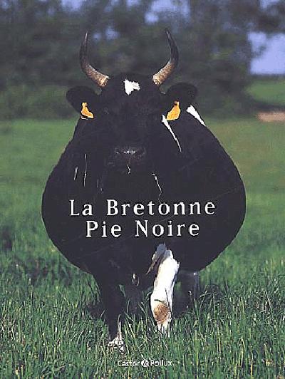 LA BRETONNE PIE NOIRE