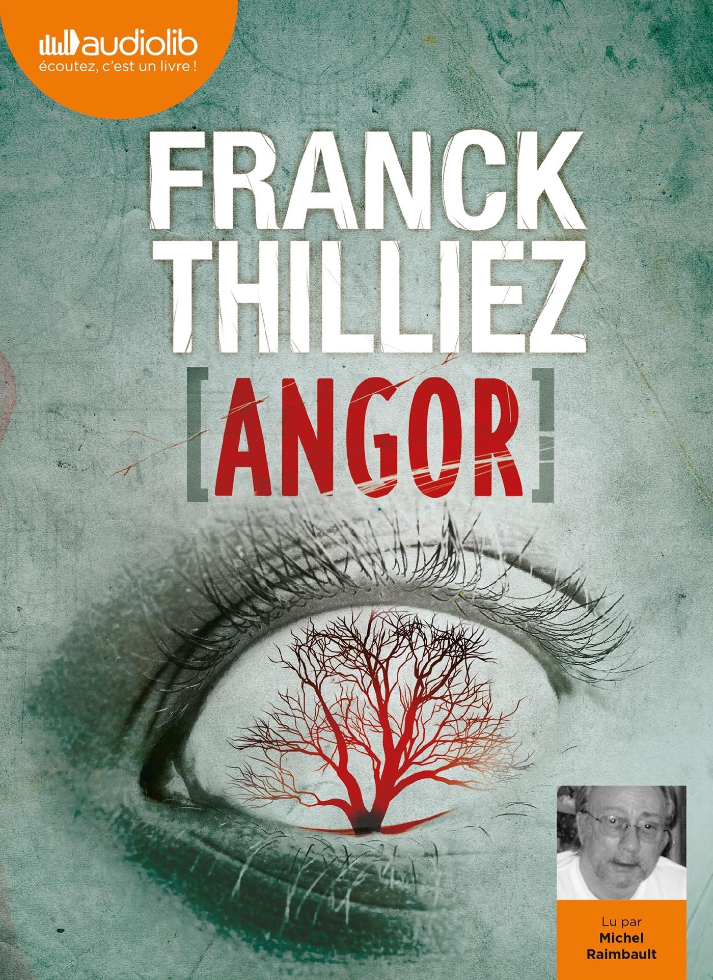 ANGOR - LES ENQUETES DE SHARKO ET HENNEBELLE - T8 - LIVRE AUDIO 2 CD MP3