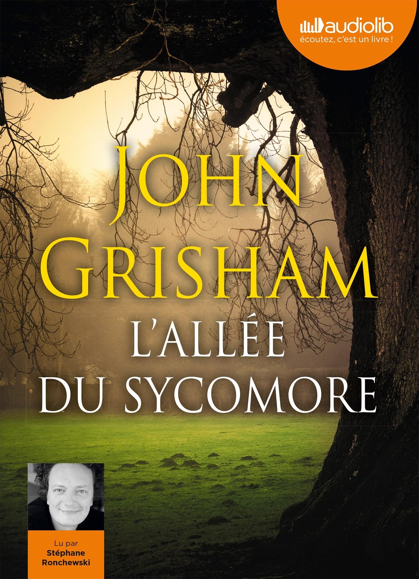 L'ALLEE DU SYCOMORE - LIVRE AUDIO - 2 CD MP3