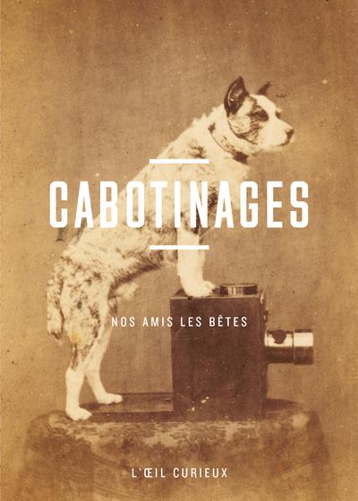 CABOTINAGES - POSES A POILS - L'OEIL CURIEUX