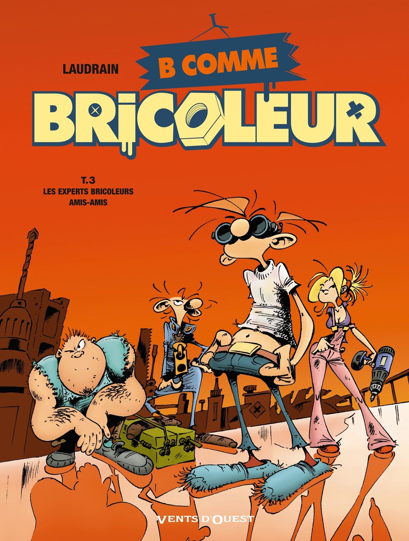 B COMME BRICOLEUR - TOME 03 - LES EXPERTS BRICOLEURS AMI-AMIS