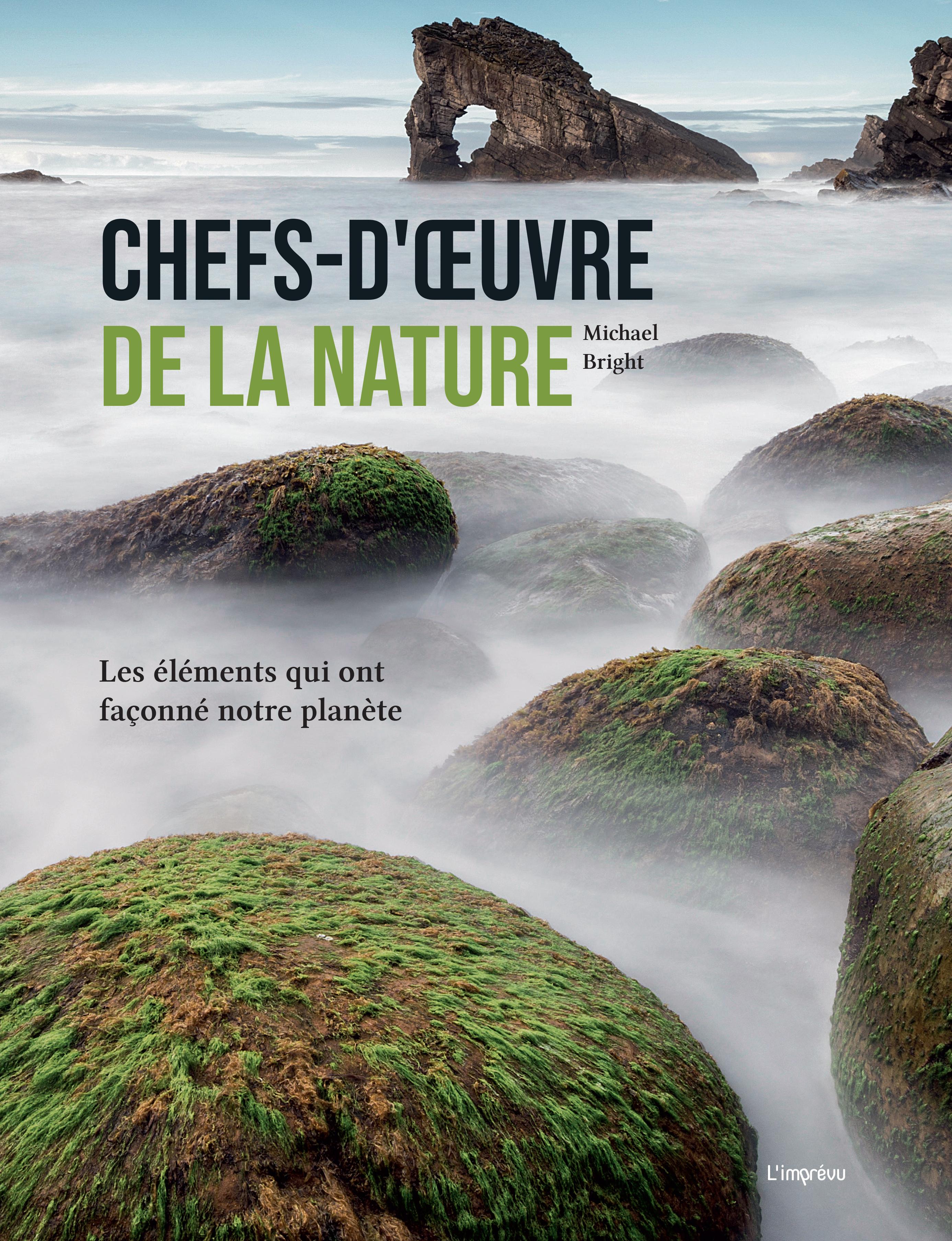 CHEFS-D'OEUVRE DE LA NATURE LES ELEMENTS QUI ONT FACONNE NOTRE PLANETE