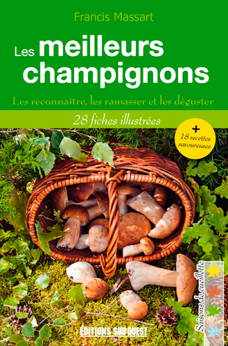 MEILLEURS CHAMPIGNONS