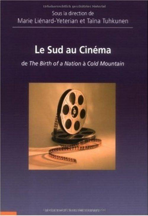LE SUD AU CINEMA - DE THE BIRTH OF A NATION A COLD MOUNTAIN