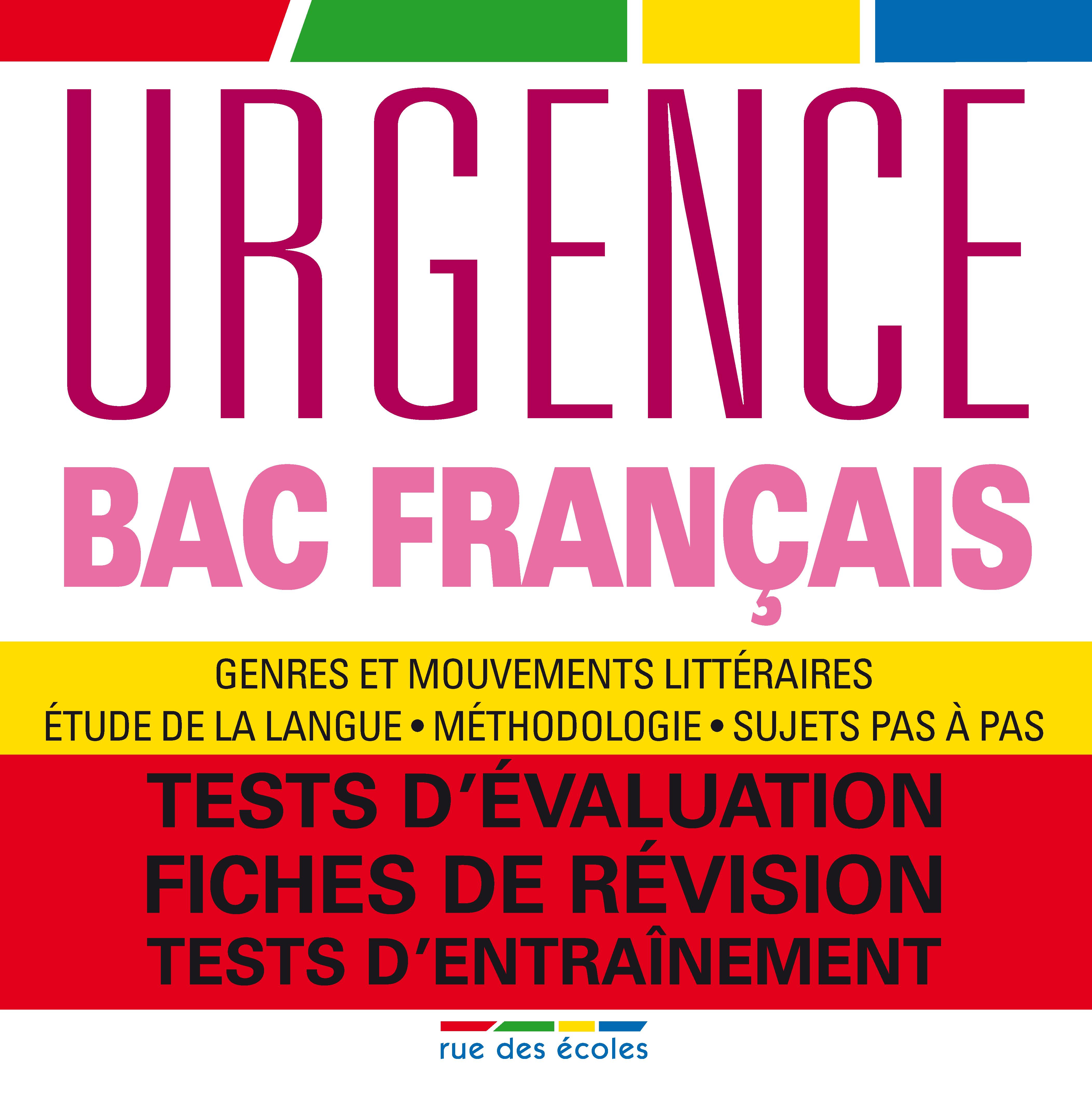 BAC FRANCAIS 2013