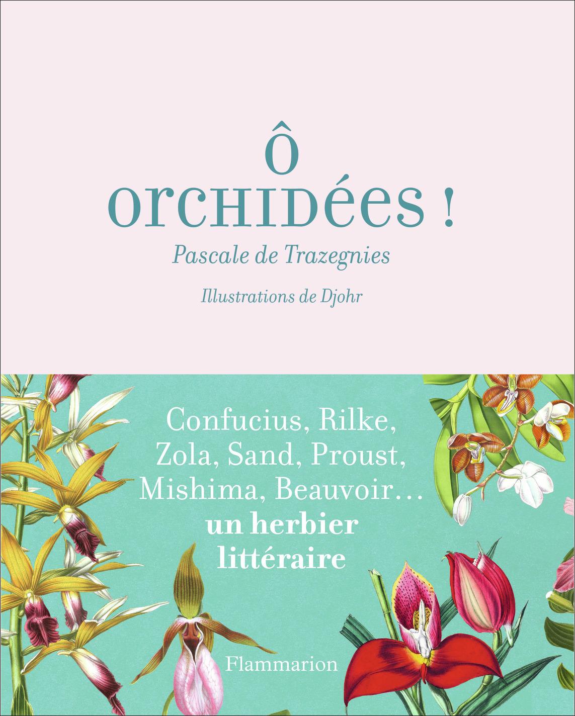 O ORCHIDEES ! - DE CONFUCIUS AUX WHITE STRIPES