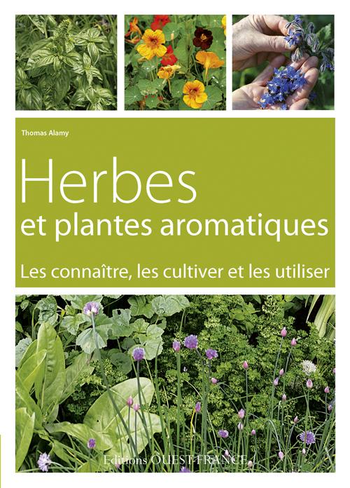 HERBES ET PLANTES AROMATIQUES