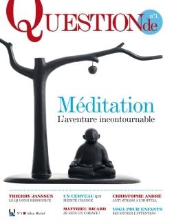 QUESTION DE N1 LA MEDITATION