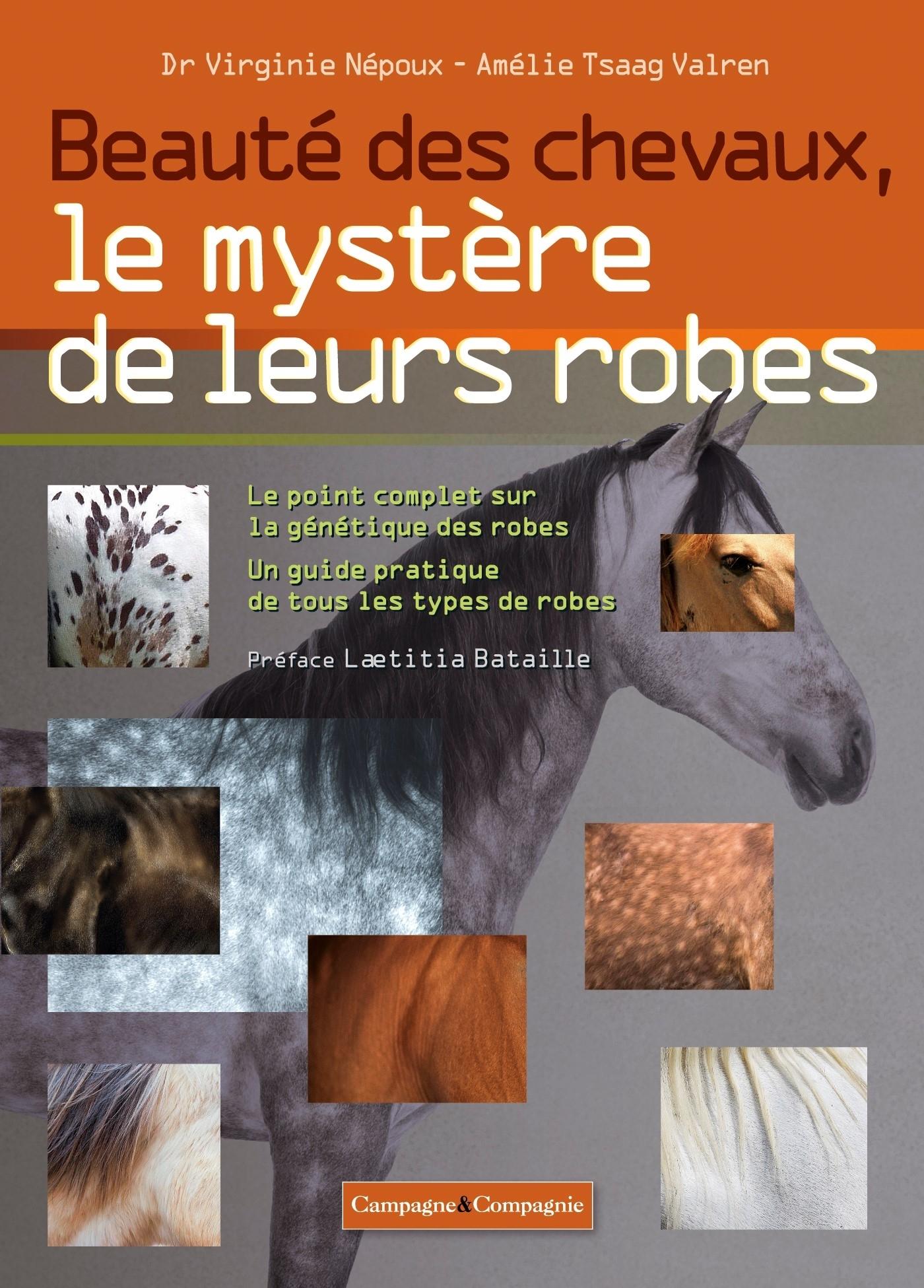 BEAUTE DES CHEVAUX, LE MYSTERE DE LEURS ROBES