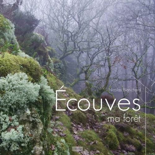 ECOUVES, MA FORET