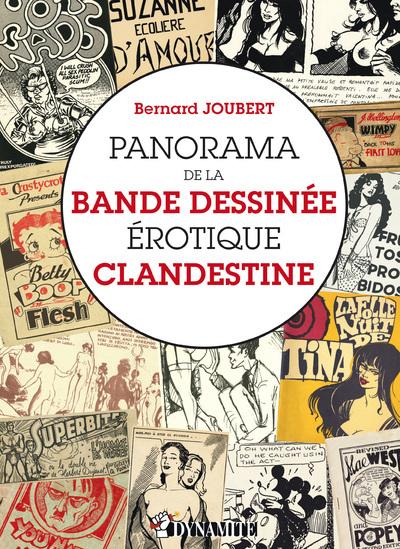 PANORAMA DE LA BANDE DESSINEE EROTIQUE CLANDESTINE