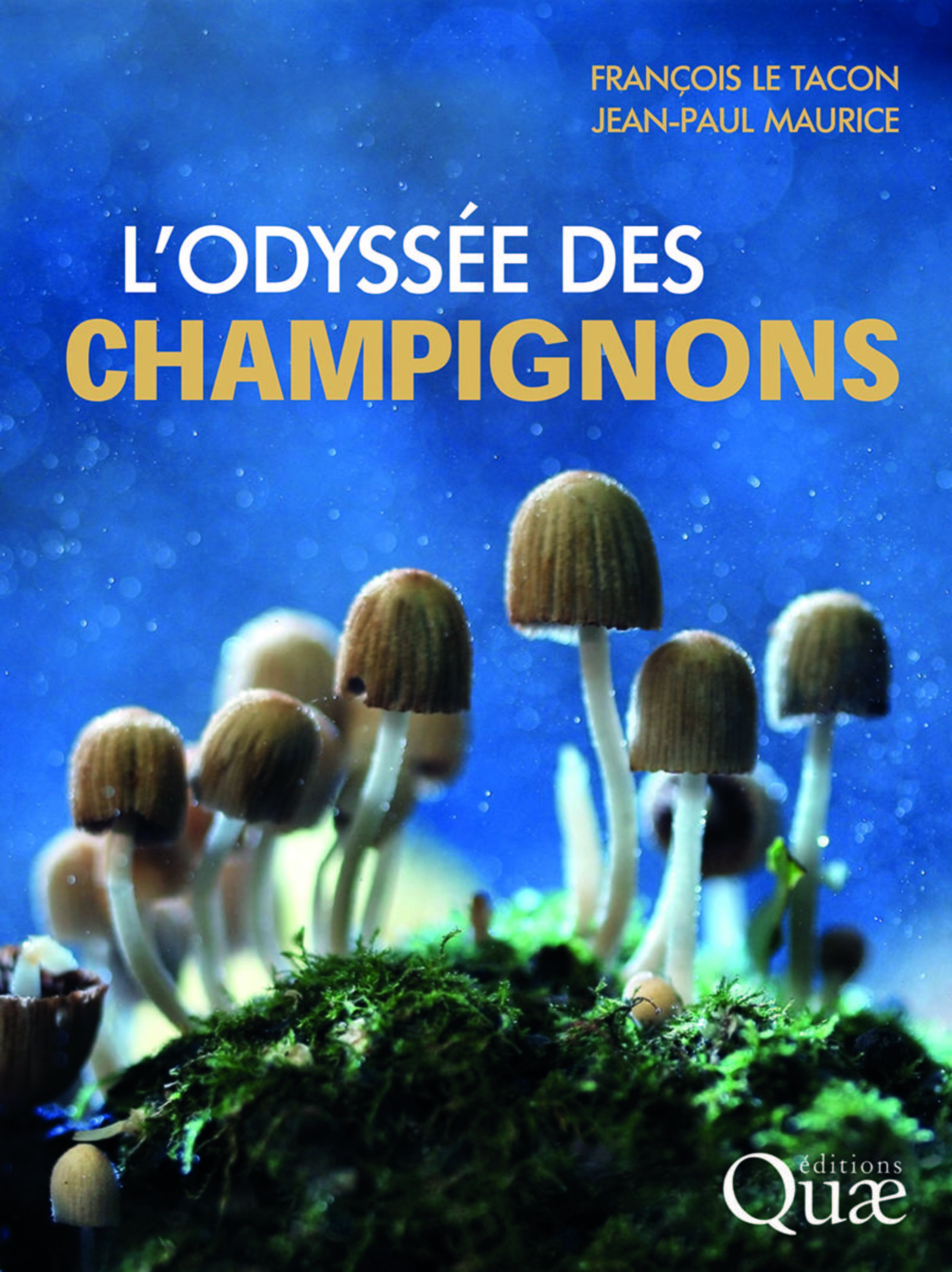 L'ODYSSEE DES CHAMPIGNONS