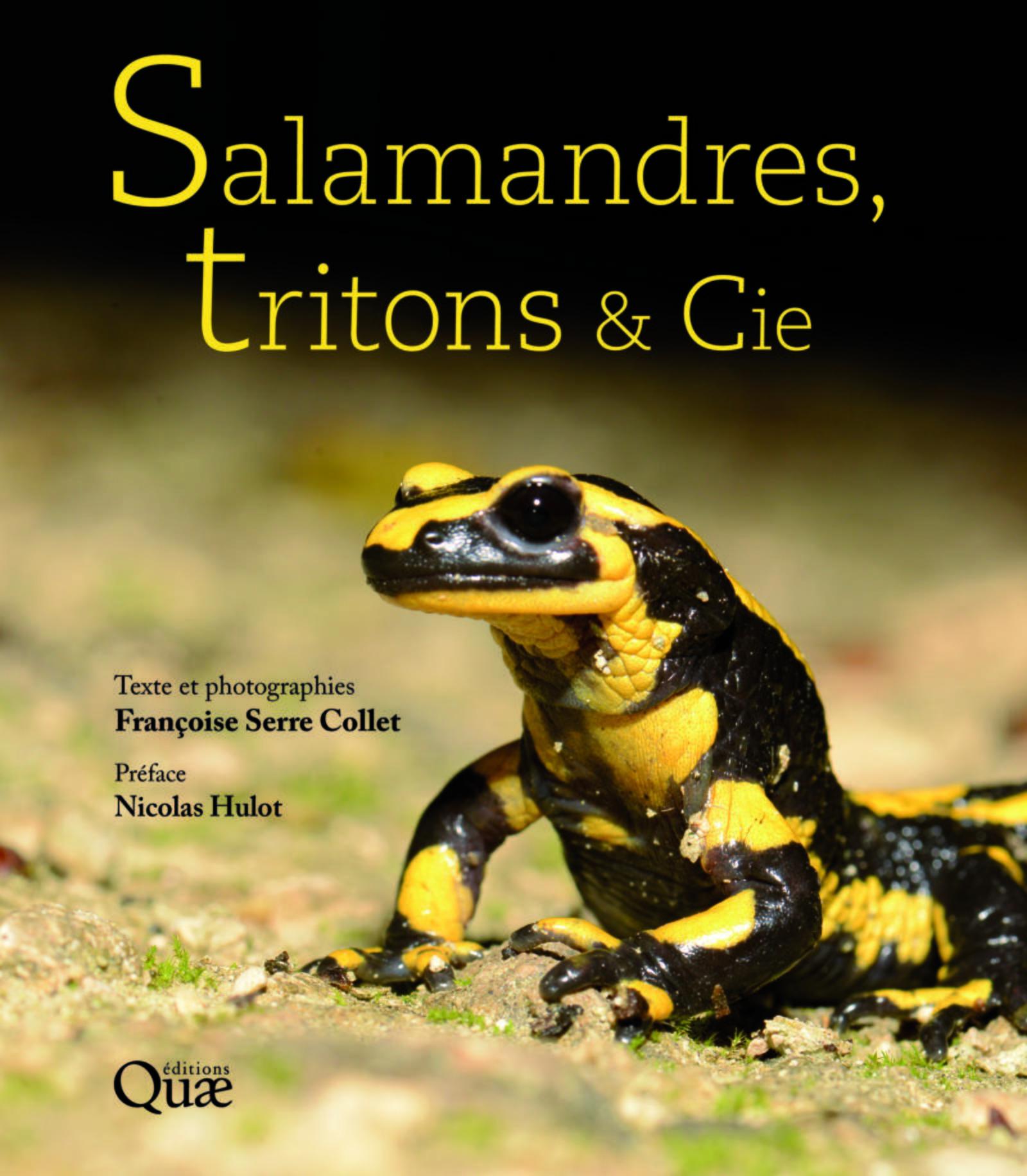SALAMANDRES, TRITONS ET CIE - PREFACE NICOLAS HULOT