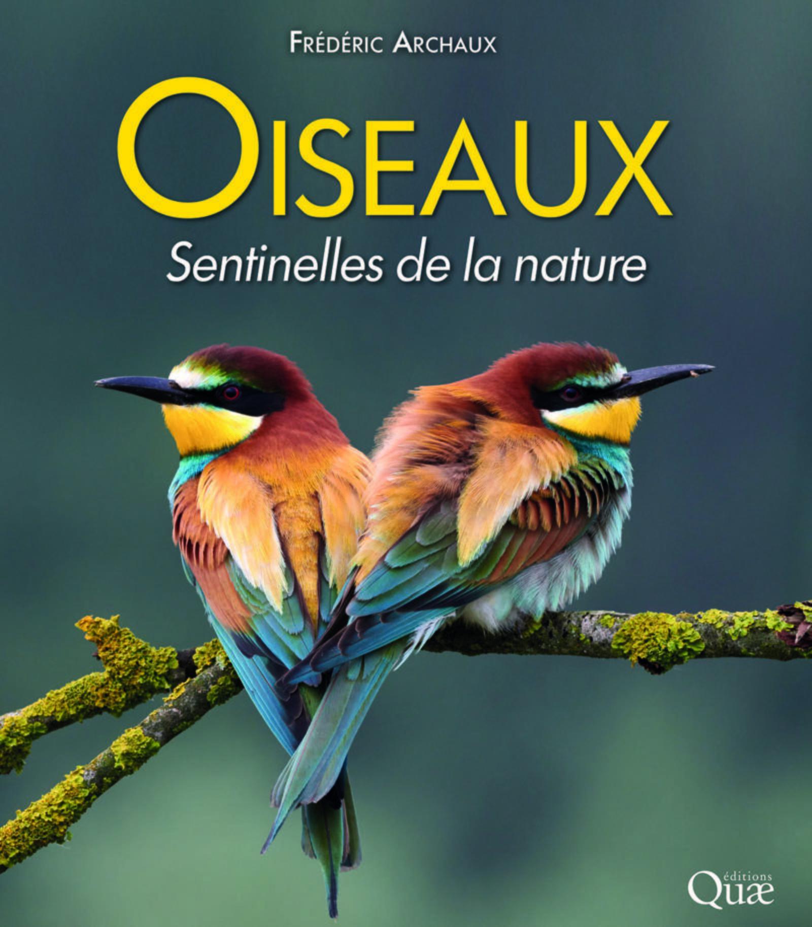 OISEAUX  SENTINELLES DE LA NATURE