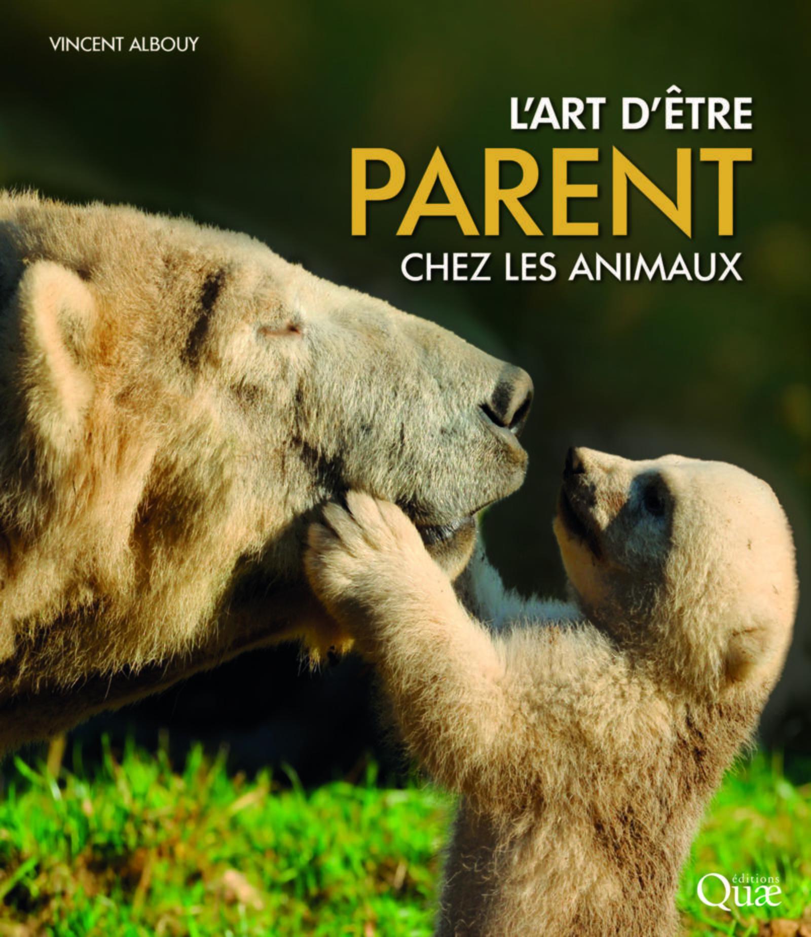 L ART D ETRE PARENT CHEZ LES ANIMAUX