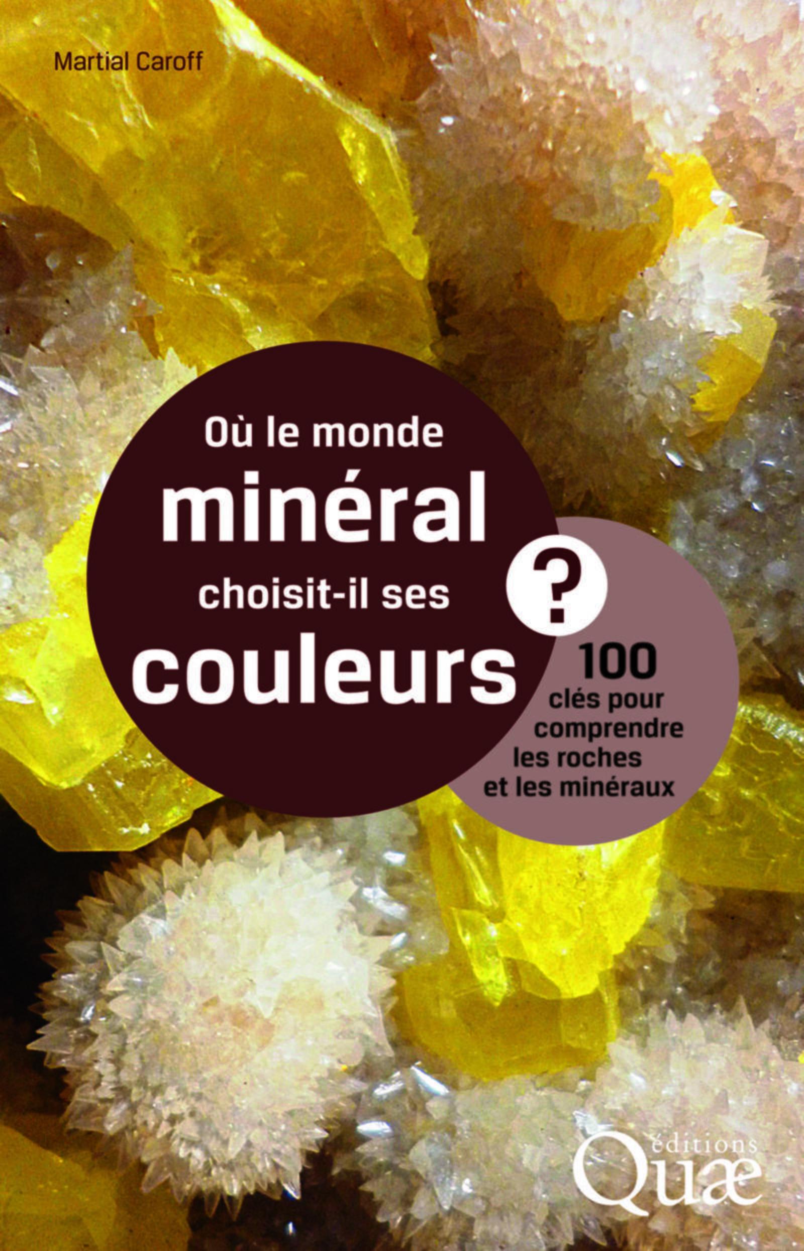 Où le monde minéral choisit-il ses couleurs ? : 100 clés pour comprendre les roches et les minéraux